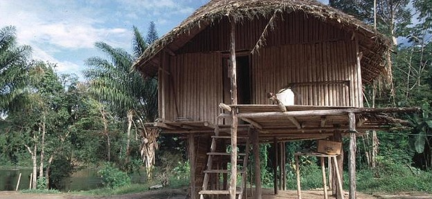Traditional houses in Suriname